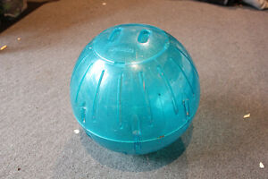 11.5 Rodent exercise ball