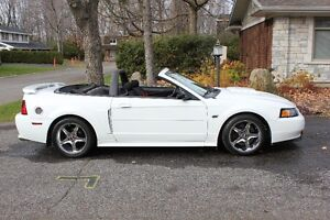 2002 Ford Mustang GT Convertible V8 - Mint and rare white
