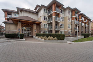 #206 1083 Sunset Drive, Kelowna -  Located across from the beach