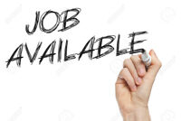 Jobs in Etobicoke Earn Cash $$$!!