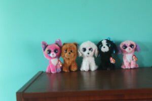 5 Small Dog Beanie Boos Excellent Condition With Tags