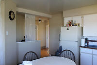 Room available for Single Male or Female -Kitchen and bath Share