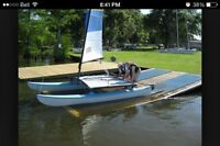 Hobie cat catamaran rudders