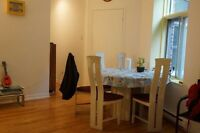 Room in big 5 1/2 in on Saint Urbain Street: Plateau Mont Royal