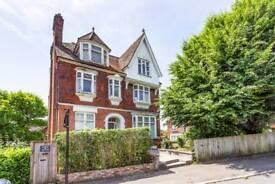2 bedroom flat in Harold Road, London, London, SE19