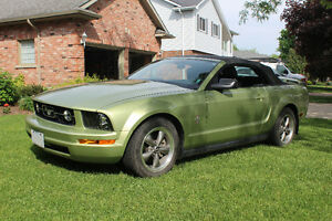 2006 Ford Mustang V6|Leather|Pony Package Convertible