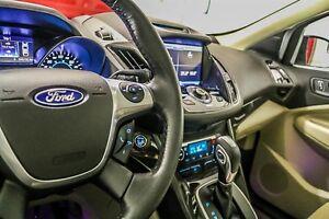 2014 Ford Escape Titanium - FWD Kingston Kingston Area image 14