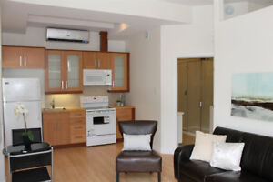 Modern air-conditioned 1br apartment in prime central location