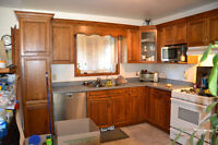 Oak Kitchen Craft Cabinets for Sale