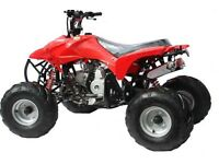 MotoX1 110cc quad bike Atv raptor replica