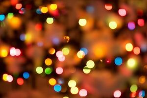 Holiday Decoration Installation Services