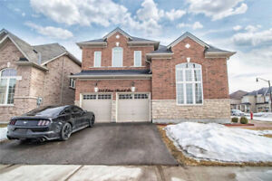 Immaculate Aprox 3200 Sqft Home With 5+2 Bedrooms
