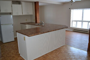 OPEN-CONCEPT APARTMENT IN CENTRAL LOCATION - ALL IN - April 1