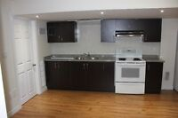 1BR New Basement Apartment for Rent in Milton (Derry & Bronte)