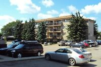 1 Bedroom Apartment - Rocky Mountain House