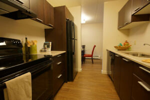 Large, professional, clean 2 bedroom apartment near Trout Lake
