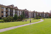 JUST LISTED: 2 BEDROOM CONDO IN LINDENWOODS. INSUITE LAUNDRY