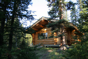 Wilderness Ecotourism Cabins