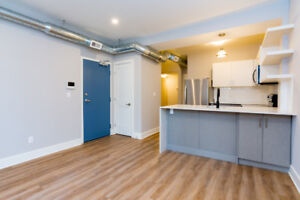 Spectacular 2 Bed/2 Bath Steps to Queen's, KGH