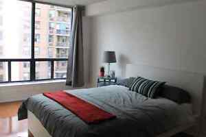 Large Fully Furnished 2 Bedroom Condo