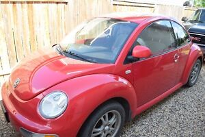 GREAT LITTLE RED BEETLE FOR SALE