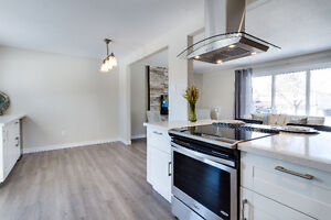 Fully Renovated In Brantford's North End! Cambridge Kitchener Area image 7