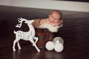 ~ NEWBORN PHOTOGRAPHY ~ London Ontario image 6