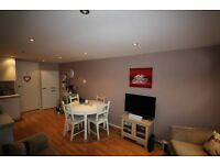 1 Double Bedroom, Professional Flat Share