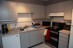 Condo Steps to Ryerson & Eaton Centre @ 298 Jarvis St 801