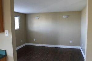 Spacious Above Ground Basement Apartment in CBS –Pet Friendly