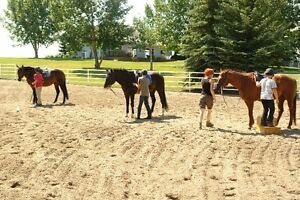 Horseback Riding Day-Camps | Located Just West of Calgary