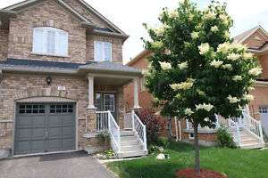 Gorgeous 3 Bedroom Home Available Immediately