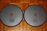 WOW - 2x25 lbs metal plates.