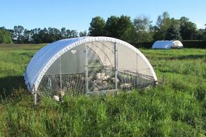 Cackellac Chicken Shelter   1312