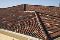 The ROOF Man-BUDGET FRIENDLY available daily 289 219 1278