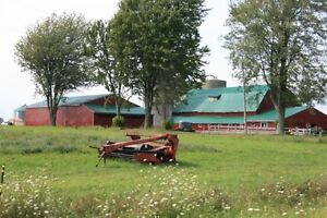 50 Acre farm with great curb appeal,