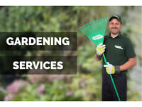 🌿 Gardening in whole London! 🌿 Garden Maintenance/Lawn Care/Jet Washing/Tree Surgery