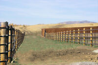 Gates, Feeders, Continuous Fence, Loader Spikes & more