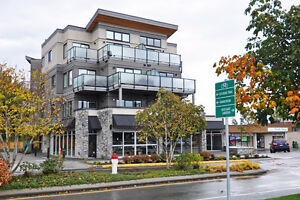 Brentwood Bay 1 Bedroom new condo - Penthouse