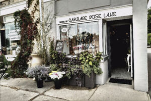 Beautiful Store for Lease in Down Town Galt