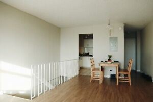 101 Apartment 4 ½ Looking for a GIRL Roommate! Available NOW