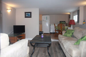 Furnished One Bedroom Apartment near Downtown