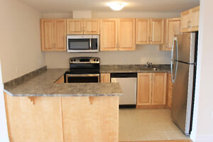 Newly Renovated 3 Bedroom