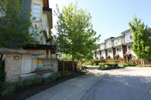 2 Bedroom, 1 Den, 2.5 Bath Townhouse 3 Floors Surrey/Langley