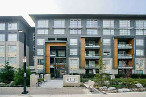 SFU/Burnaby Mountain 2 Bed 1 Bath Unit for Rent