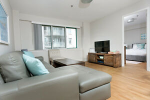 Downtown,  McGill - BEAUTIFULLY FURNISHED (7-9 MONTH LEASES)