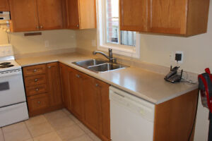 kitchen countertop (laminate) with double sink and faucet