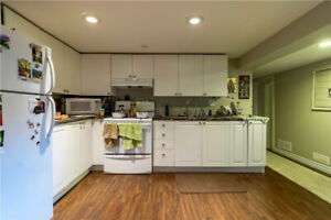 Beautiful 2 BR Basement - Ainslie Wood - All Utilities Included