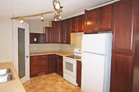 PET FRIENDLY - RENOVATED 3BD HOUSE FOR RENT