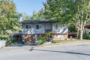 4 Bedroom Home on Large Lot!